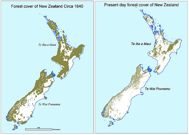 Forest cover of Aotearoa (New Zealand), 1840-present day.