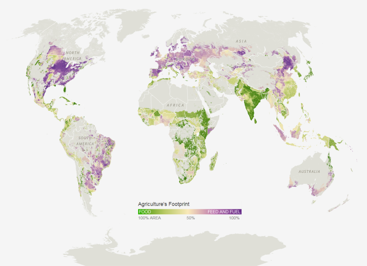 How Our Crops Are Used: Food vs. Feed and Fuel. Source: http://www.nationalgeographic.com/foodfeatures/feeding-9-billion/