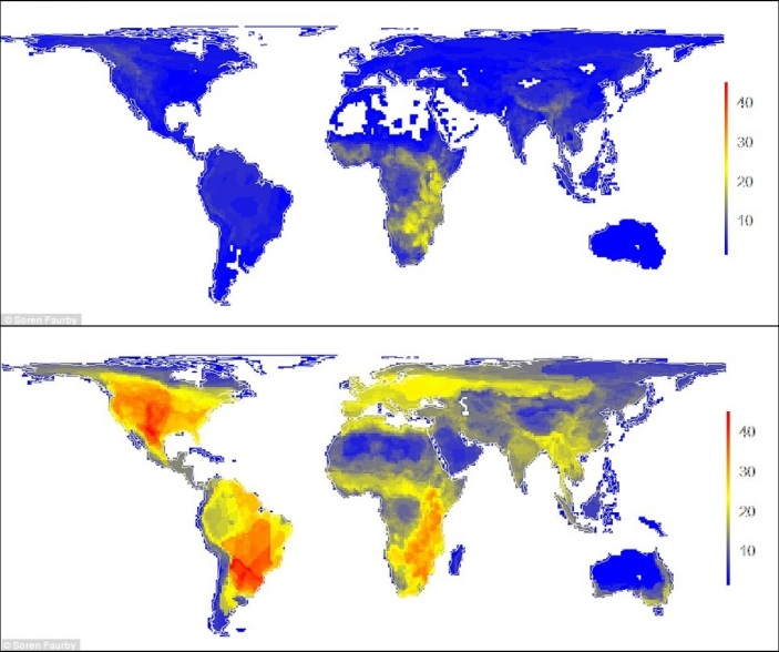 Image result for historic and prehistoric human-driven extinctions have reshaped global mammal diversity patterns