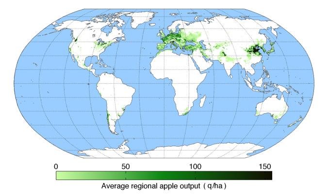 average-regional-output-apple