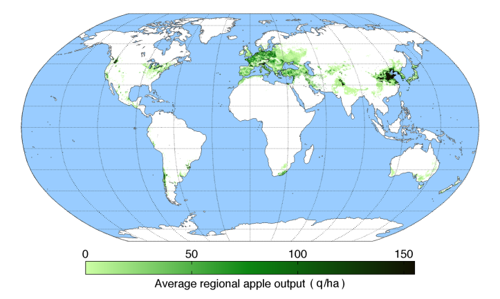 average-regional-output-apple