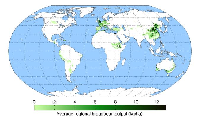 average-regional-output-broadbean