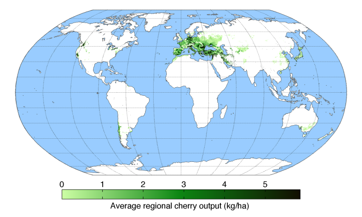 average-regional-output-cherry