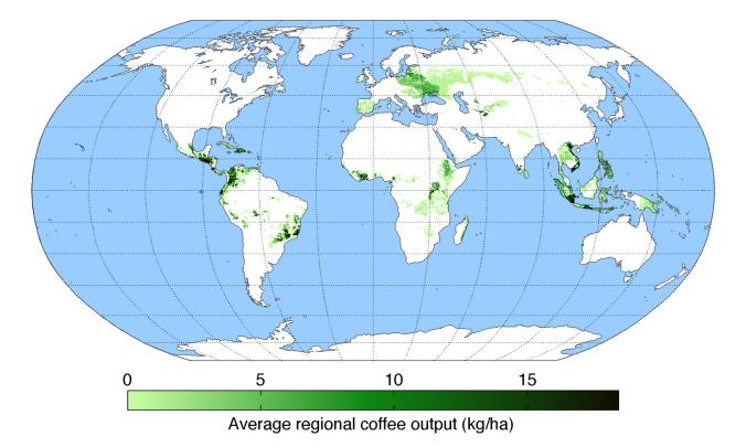 average-regional-output-coffee
