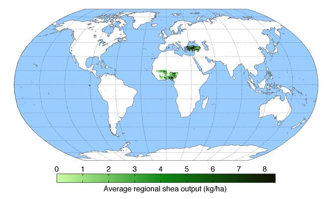 average-regional-output-shea