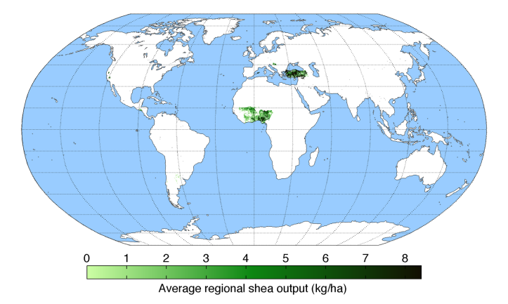 average-regional-output-shea