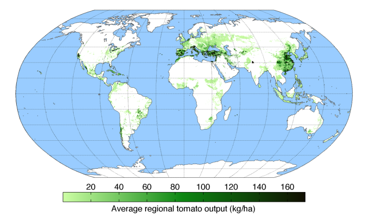 average-regional-output-tomato