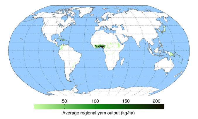 average-regional-output-yam