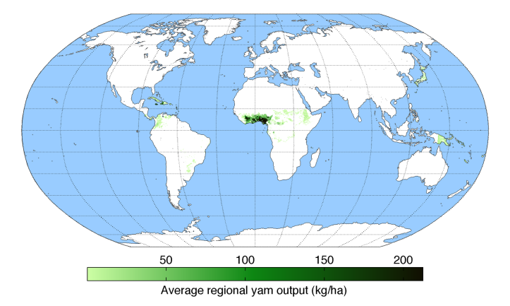 average-regional-output-yam