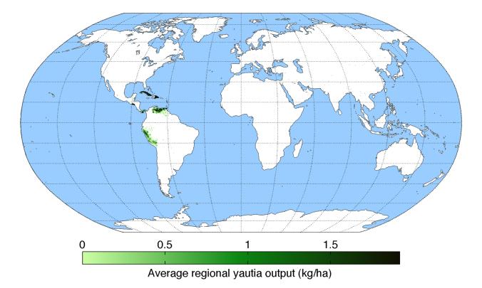average-regional-output-yautia